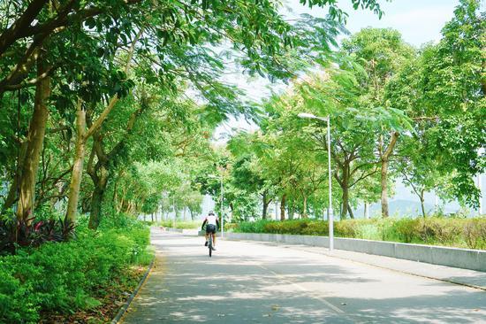 在香港绿色郊野尽享怡然自得的骑行时光(图片来源: 潘潘三条子)
