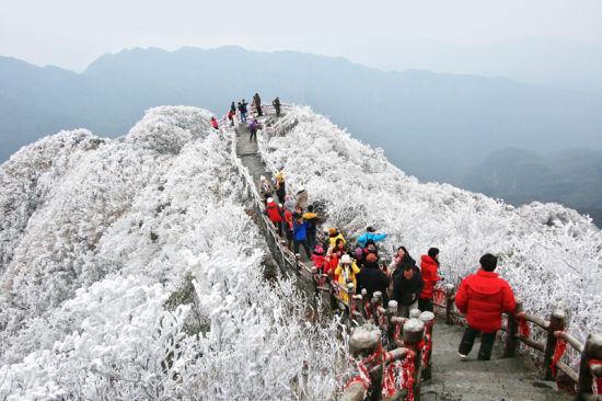 """大明山上""""白雪皑皑"""" 图:大明山风景区"""