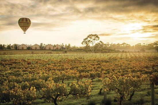 南<a href='http://travel.sina.com.cn/aodaliya-lvyou/?from=b-keyword' target='_blank'><em>澳大利亚</em></a>州芭罗莎热气球