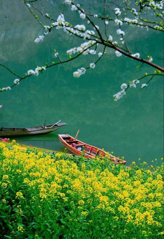 江南是春天里最美的诗