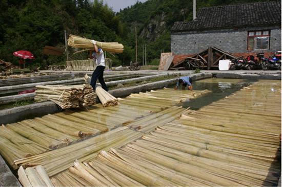竹纸制作技艺