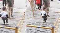 游客抱孩子翻护栏踩太庙丹陛 网友:这是要登基啊