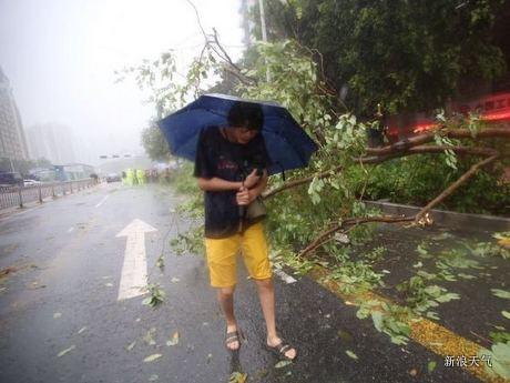 妮妲成近年来登陆珠三角最强台风