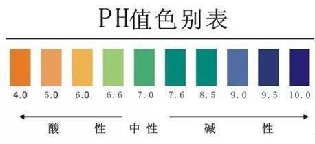 这是因为一方面人体体液是一个缓冲体系,pH值受外界影响较小;另一方面,肺和肾的调节作用会减轻pH值的显著变化。