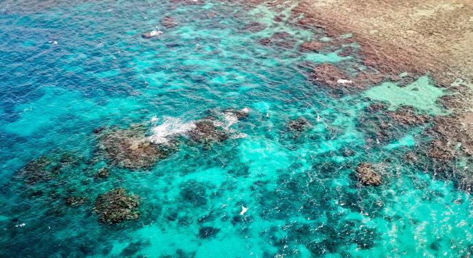 在上天入海中发现一个全新大堡礁
