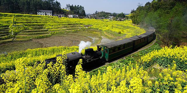 成都有辆开往春天的小火车