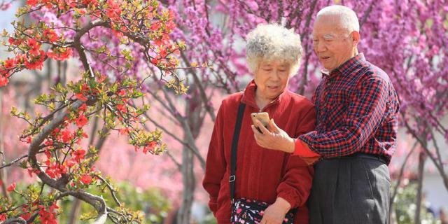 郑州公园万紫千红百花齐放