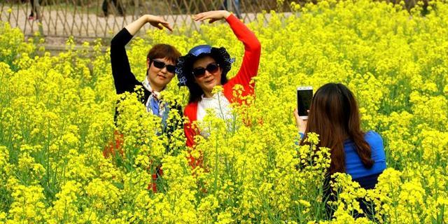 春天的油菜花海是拍照圣地