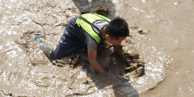小朋友泥塘捉鱼玩嗨了