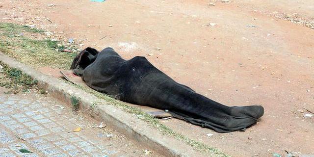 他们为啥裹成木乃伊躺在街上