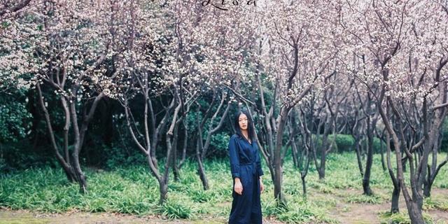 种桃种李种春风