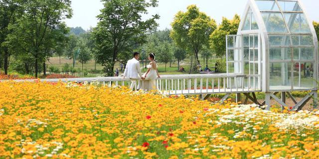 初夏郑州近郊深藏一诗意花园