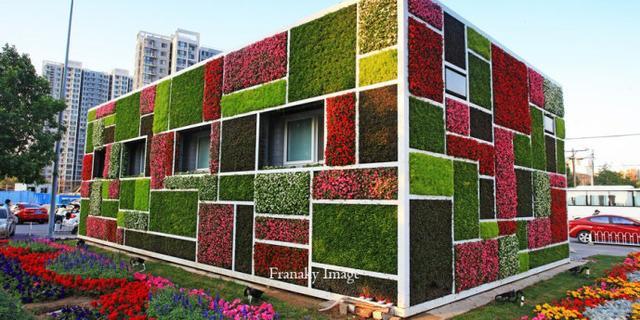 外墙四周开满花草的公厕