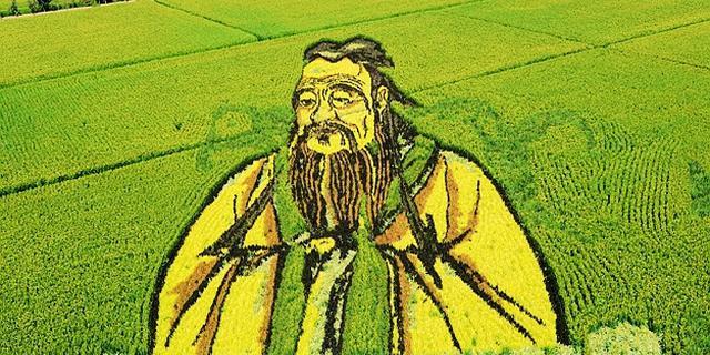 形象逼真的3D立体稻田画