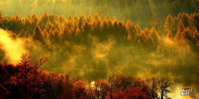 内蒙古魔幻大森林