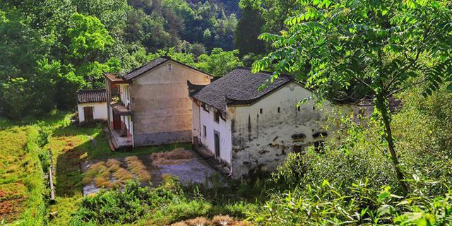 苍松古树掩映下的古村落