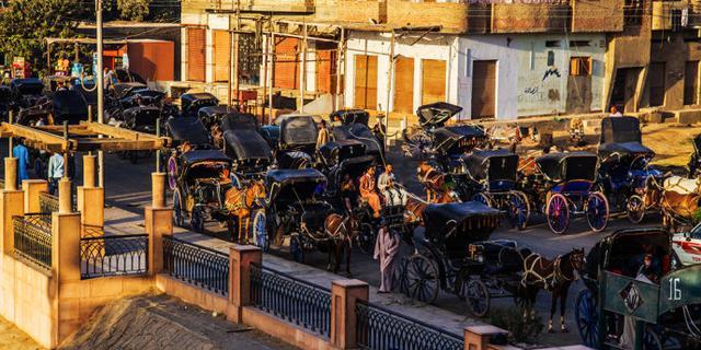 乘轻便马车前往埃德福神庙