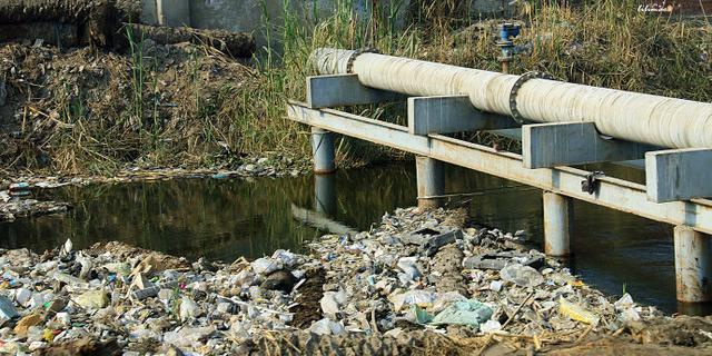 埃及街头竟有这样的垃圾河