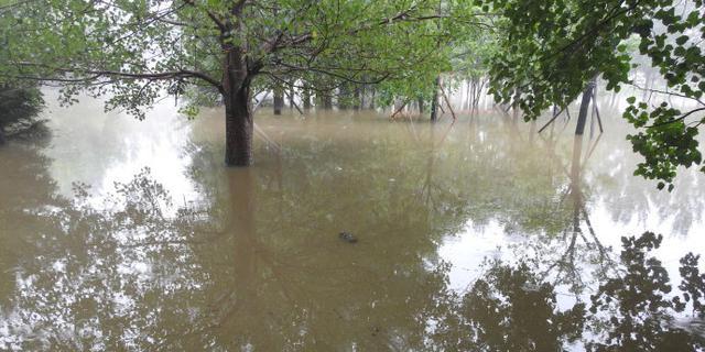吉林大雨又来袭,公园遭殃