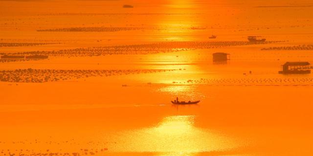 台风过后唯美灿烂的金色滩涂