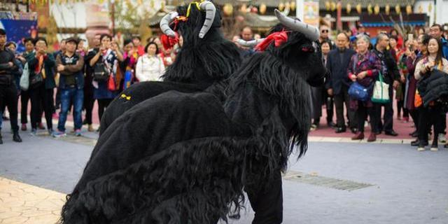 牛啊!这里人独爱舞大黑牛