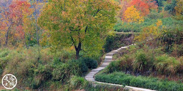 皖南的古村落在秋天恍若仙境