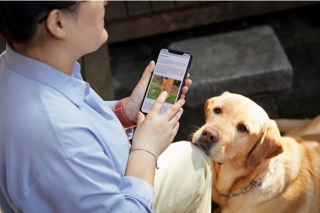 """国际盲人日,苹果来帮""""盲"""":盲人女孩借助旁白功能实现梦想"""