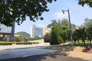 2020年大连理工大学外国语学院硕士研究生招生简章