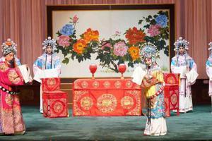 冉常建:探索院校与戏曲院团联合培养人才教学模式