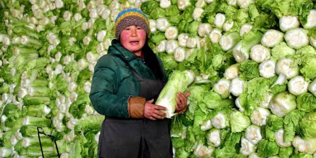 实拍:卖大白菜的女人