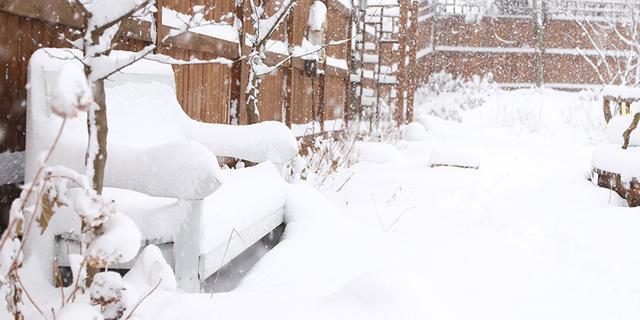 建了座一言不合就被雪埋的花园