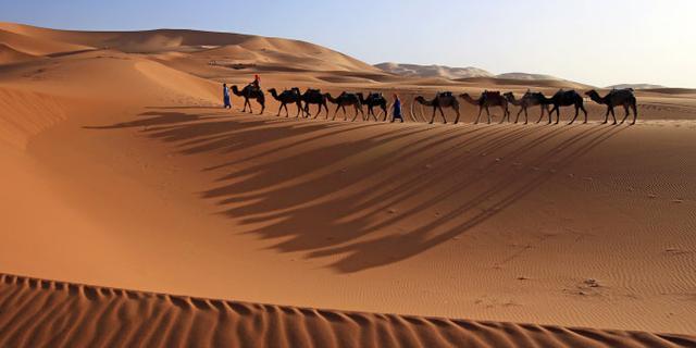 我们的撒哈拉,只有沙漠没有故事