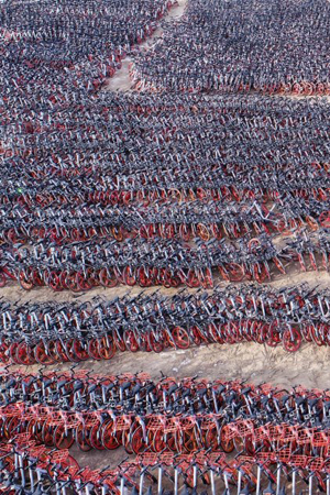 """数千辆闲置共享单车""""冬眠"""""""