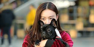 美女与爱犬