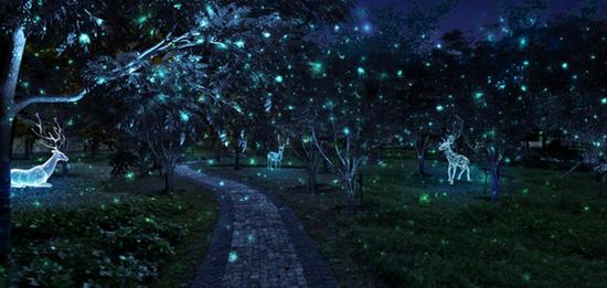 光影十景森林秘境