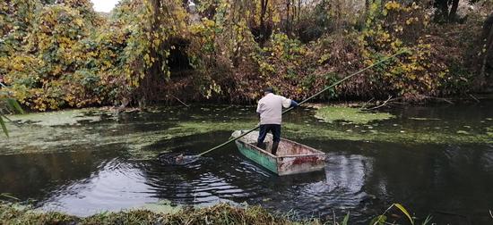 梅新居委清理河道保生态文明