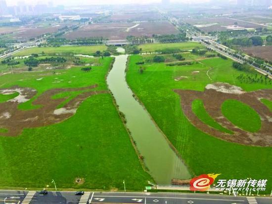 物博会两场高峰论坛 新安百万平米空置地块覆绿