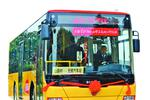 """公交旅游通往""""美丽乡村"""" 山联村游客人数增加了50%以上"""