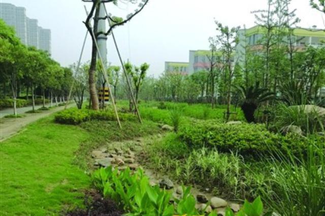 滨湖区首次引入海绵城市项目 五湖大道小游园建成投用