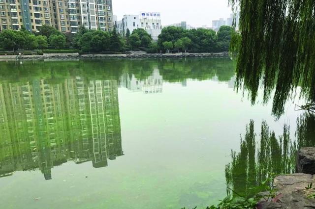 七旬老太溺亡河中 生前曾多次表达不想活的念头