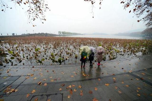 台风与冷空气遭遇 多地将有暴雨