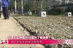 【新鲜!】大理石上种草坪 这是哪门子的新科技?