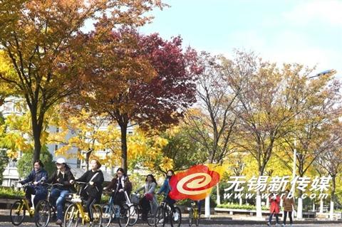 12日,学生们在秋景如画的江南大学校园内骑车出行。(还月亮 摄)