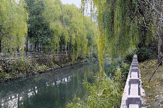 """昔日""""脏水塘"""" 今成""""最美河道"""""""