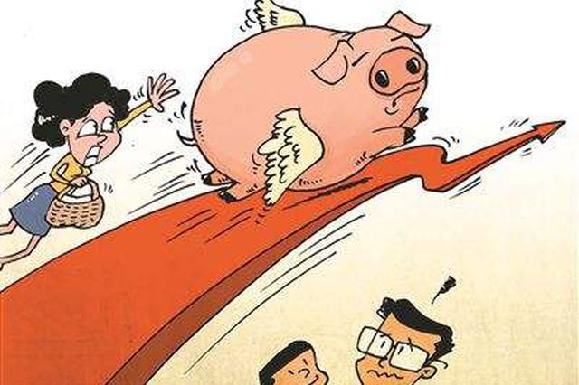 """猪贩子盯着养殖场争购""""二师兄"""" 猪价越涨越""""抢"""""""