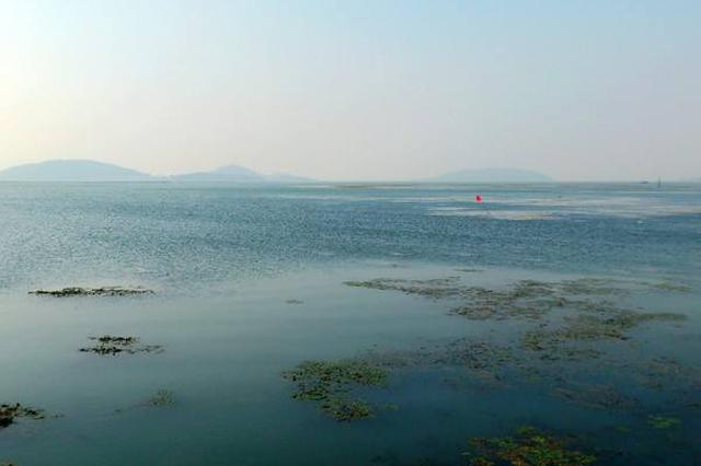 现场直击太湖围网清拆评估 拍照签字结果两次公示