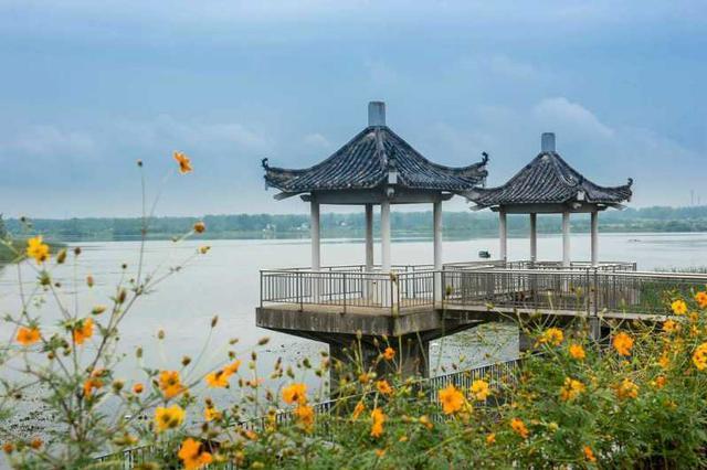 第十届江苏省园艺博览会28日盛大开幕