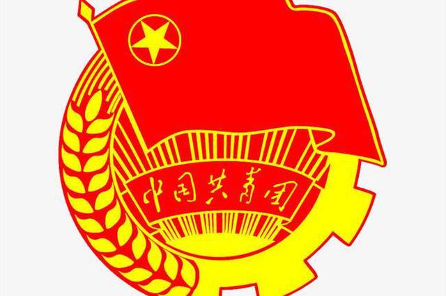 """江苏共青团:做不占股份的""""合伙人"""""""