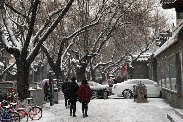 春雪穿庭作飞花,疾控中心叮嘱特殊人群防失温、防中风