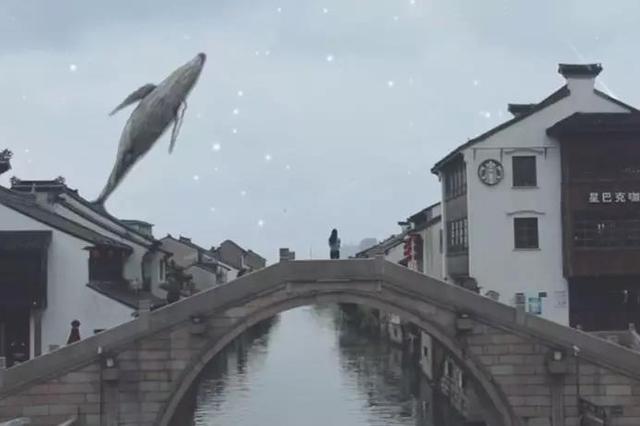 首发!2019物博会主题曲《融·WIOT》,惊艳!
